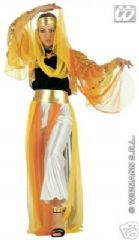 Harem Belly Dancer Costume